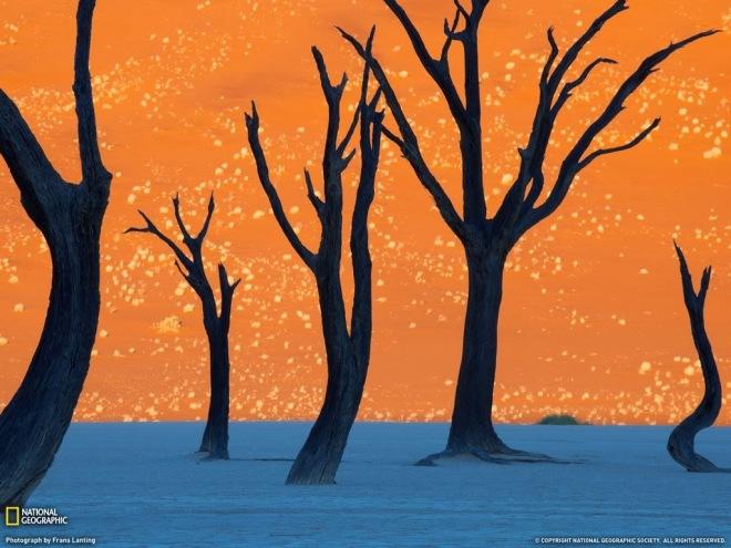 The orange Sossusvlei sand dunes in Namibia.