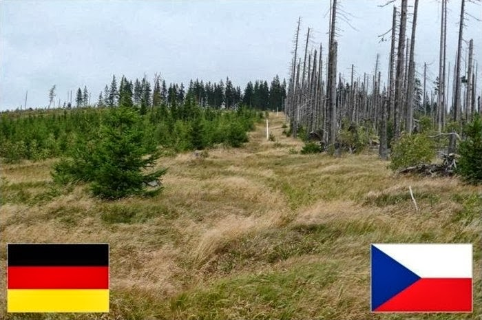 Germany and Czech Republic Country Border