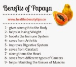 papaya health benefits 03 747241