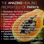 papaya health benefits 04 752919